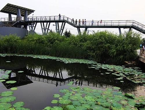 雨阳公园.jpg
