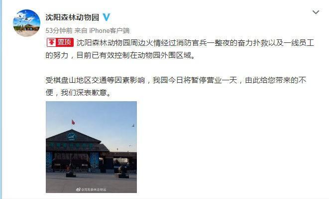沈阳森林动物园最新官方微博截图