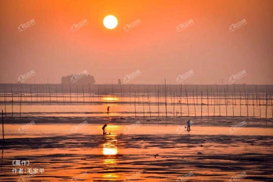 皇家海湾公馆属地摄影展|北海,一座来了就不想走的城市_北海楼盘网