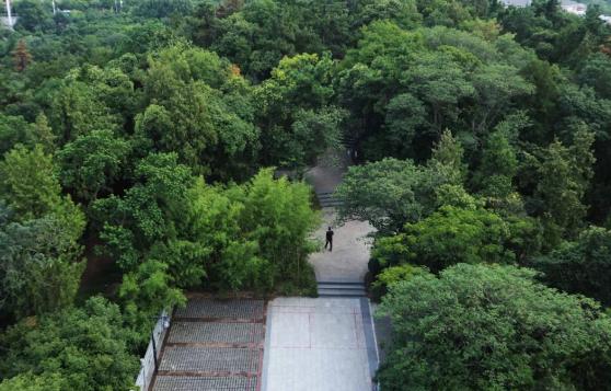 张公山公园