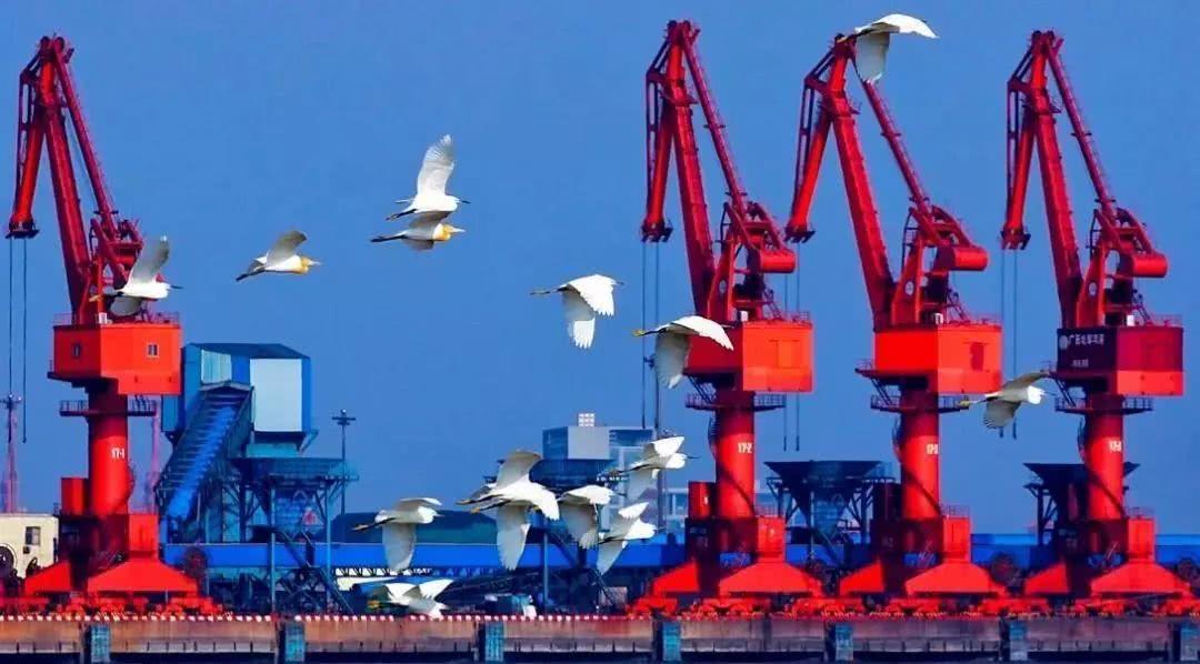 雅居乐金海湾 | 2020,正在爆发的北海-北海楼盘网